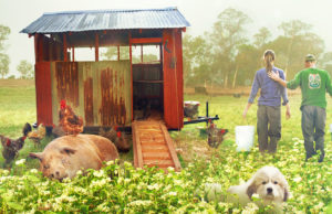 La fattoria dei nostri sogni